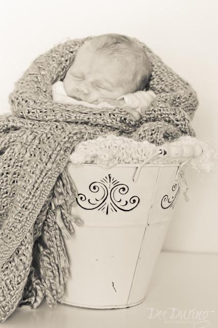 Baby Dax (9)