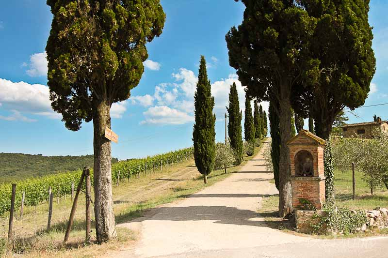 Tuscany landscape photographs Dee During 8566 Travel Photography | Tuscany | Lucca
